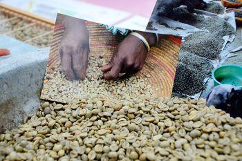 Fair Trade: Eine neue Konsumethik ist in der gesellschaftlichen Lebensrealität angekommen. Laut einer aktuellen Studie der KPMG Wirtschaftsprüfungsgesell-schaft, sind 40% der Verbraucher bereit deutlich mehr für fair gehandelte und nachhaltig erzeugte Produkte zu zahlen. Foto: Green Live